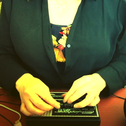 'The Stylophone' by Colleen Keough